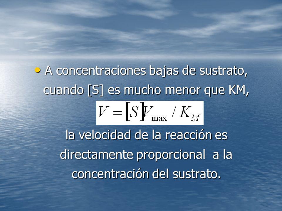 A concentraciones bajas de sustrato, cuando [S] es mucho menor que KM,